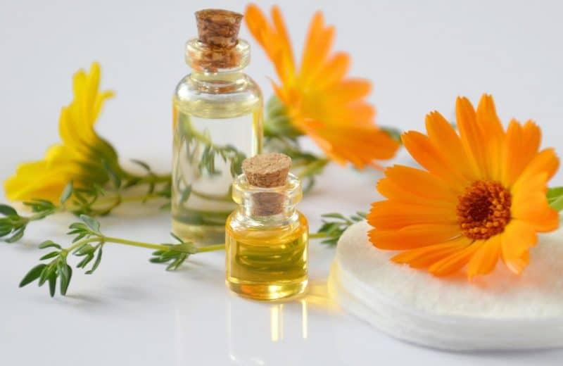 Huile essentielle immortelle d'hélichryse : une huile miraculeuse aux multiples bienfaits !