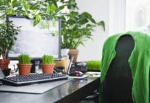 Purifier l'air à son bureau une nécessité pour sa santé